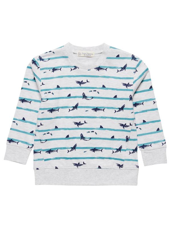 Bluză băieţi Finn Shark
