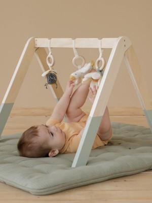 Centru activităţi Baby Gym Little Goose